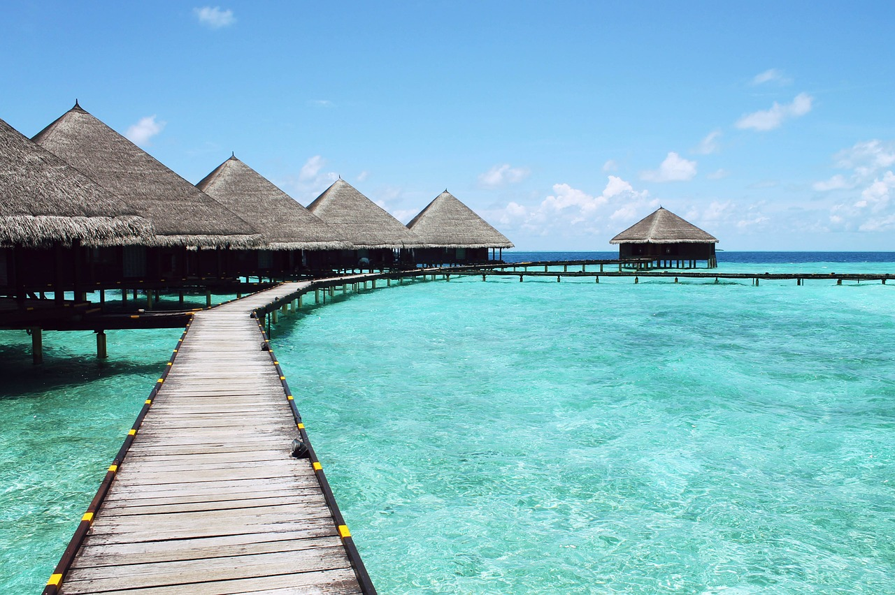 paradise vacation